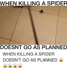 I Tried Killing A Spider - 25 best memes about spider spider memes