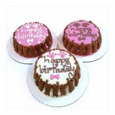 order a cake online celebrating your pet s birthday order cakes on at four paws