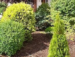 garten und landschaftsbau kiel willkommen gartenbau kern de