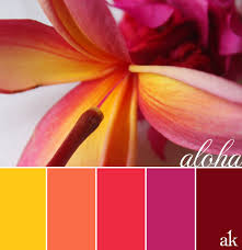 pink plumeria color palette hawaiian inspired katelyn u0027s wedding
