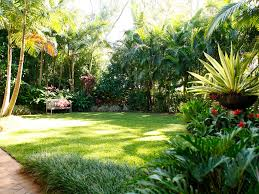 tropical garden coorparoo u2013 boss gardenscapes