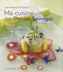 la cuisine des plantes sauvages ma cuisine des plantes sauvages jean dumaine