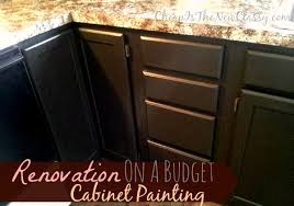 Kitchen Cabinets Kits by Kitchen Cabinet Paint Kit Lowes Com Painting Oak Cabinets Using