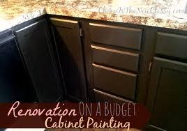 paint kitchen cabinets kit u2013 quicua com