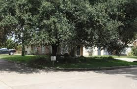 Patio Homes In Katy Tx Fountain View Patio Homes Rentals Houston Tx Apartments Com