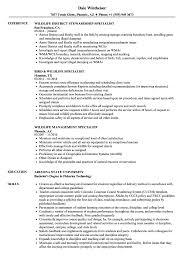 sle resume format for journalists arrested or restrained at dapl wildlife resume sles velvet jobs
