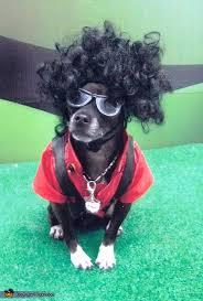 Halloween Costumes Michael Jackson Michael Jackson Thriller Halloween Costume Dogs