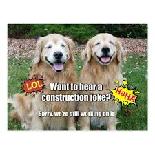 Meme Construction - funny golden retriever construction joke meme postcard zazzle com