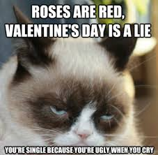 Single Valentine Meme - 65 best valentines day memes for you