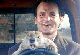 Bill Murray Groundhog Day Meme - groundhog day movie review cadet call