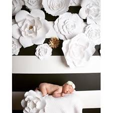 Flower Wall Decor Paperflora Paper Flower Walls Backdrops And Home Decor