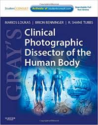 Online Human Body Gray U0027s Clinical Photographic Dissector Of The Human Body With