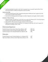 free rn resume template rn resume template free resume template free resume exles best
