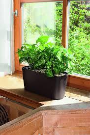 herb pots for windowsill amazon com windowsill self watering planter espresso window
