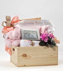 boston gift baskets welcome baby girl gift basket boston florist stapleton floral