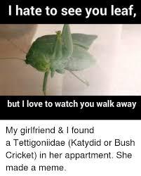 Walk Away Meme - 25 best memes about watch you walk away watch you walk away