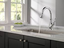 delta 9178 dst leland single handle pull down kitchen faucet