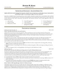 Software Sales Resume Examples by Resume Account Executive Resume