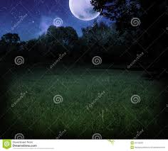 halloween nature background dark scary meadow at night halloween background stock photos
