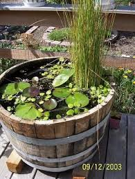 Mini Water Garden Ideas How To Make A Small Water Garden Landscape