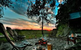 fire pit sand sky relax nature trees land evening green sky sand bushes