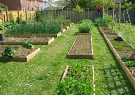 Garden Layout Kitchen Design Your Vegetable Garden Layout Design Your Own