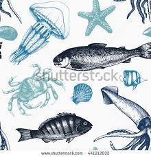 sea life stock images royalty free images u0026 vectors shutterstock