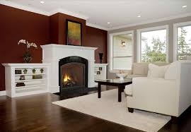 Gas Wood Burning Fireplace Insert by Wood And Gas Burning Fireplace Cpmpublishingcom