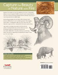pyrography patterns basic techniques and 30 wildlife designs for