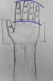 finnerty blog how to draw a hand