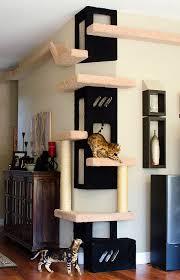 best 25 cat room ideas on cat trees cat house diy