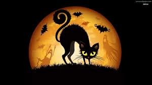 black cat halloween wallpaper free download