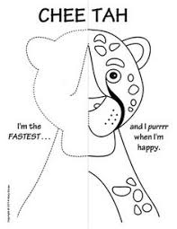 jungle animals symmetry activity coloring pages activities