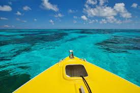 bird island belize rental bird island seychelles africa private islands for rent