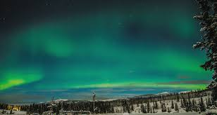 northern lights canada 2017 under the northern light nature tours yukon canada