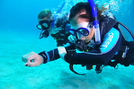 padi underwater navigation specialty 1 days 2 dives siam