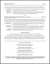 sample ceo resumes example executive or ceo careerperfectcom