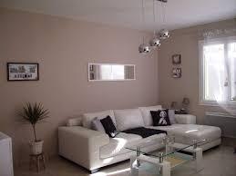 spa chambre salon gris clair et taupe collection et étourdissant deco salon