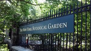 Ny Botanic Gardens New York Botanical Garden Naturally Susan S Parlour