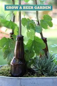 best 25 brew garden ideas on pinterest gardening tips outdoor