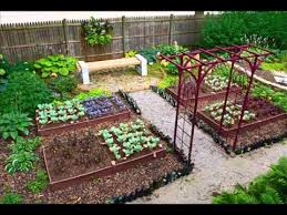 endearing backyard vegetable garden design in home decoration