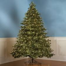 9 foot christmas tree the world s best prelit christmas tree 9 1 2 foot