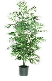 artificial indoor palm trees potted palm tree