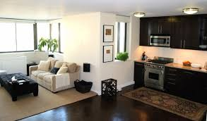 appealing living room ideas for apartments apartment living room