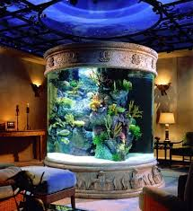 home interior items the aquarium set up as a decorative element in home interior