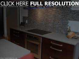 Glass Shelves For Kitchen Cabinets Glass Door Magnificent How To Make Kitchen Cabinets Cabinet
