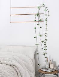 diy an indoor trellis for climbing vines gardenista