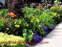 flower garden layout garden sense garden design i getting started with a plan