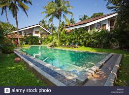 modern villas two luxury tropical modern villas with swimming pool surrounded by