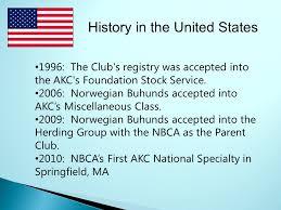 belgian sheepdog club of america national specialty norwegian buhund club of america nbca breed presentation ppt